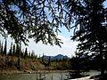 Nenana River, Denali, Alaska (2574515834).jpg