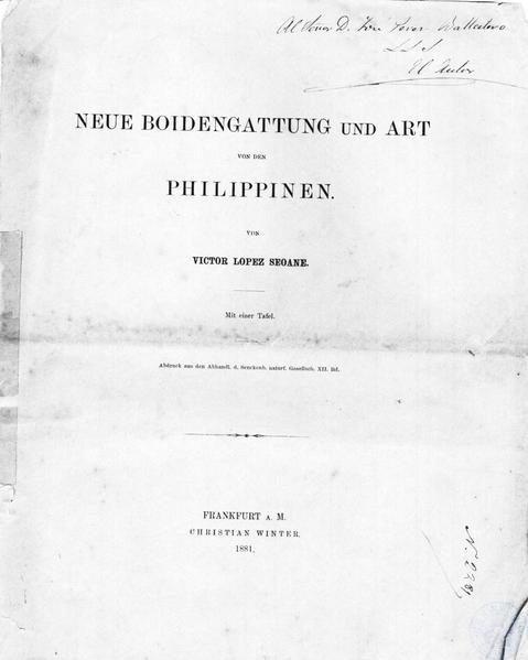 neues von den philippinen