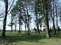 Neunkirchen, Kriegerhain (5).JPG