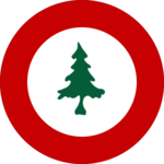 New England Air Force Roundel.png