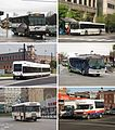 New Jersey Transit Bus Operations services commuter bus local bus light rail gobus.jpg