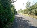 New Line, Waringstown. - geograph.org.uk - 567682.jpg