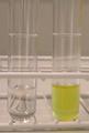 Niacin Test.png