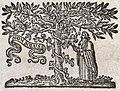 Nikolaes Heinsius the Elder, Poemata (Elzevier 1653), Druckermarke.jpg