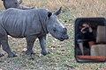 Nkomazi Game Reserve, South Africa (22663953631).jpg