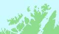 Norway - Lille Kamøya.png