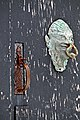Nova Scotia DGJ 4924 - Knock, Knock... (4380281788).jpg