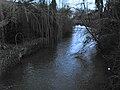 Occoches l'Authie (en amont depuis pont) 1.jpg