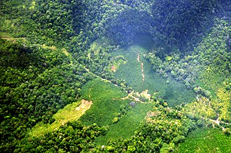 Land consumption - Tropical forest deforestation for oil palm plantations in Costa Rica