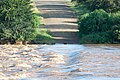 Olifants River Crossing (2363991491).jpg