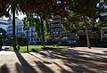Ombra al jardí del Parterre, València.JPG
