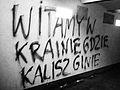 Ostrow Kalisz.jpg