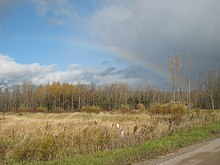 A copse or forest fronted by a field of tall, wheat-coloured grass. Grey clouds are prominent in the upper half of the image, with the azure sky visible on the left, and whiter clouds in the horizon on the left. A rainbow arcs from the copse in the lower right, through the dark clouds and then the sky, fading to the left.