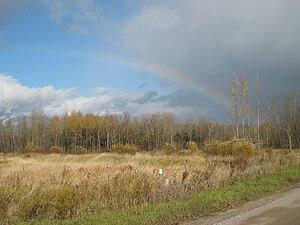 Holland Marsh - A rainbow over a non-agricultural field on the Holland Marsh.