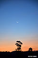 Pôr do sol em Formiga.jpg