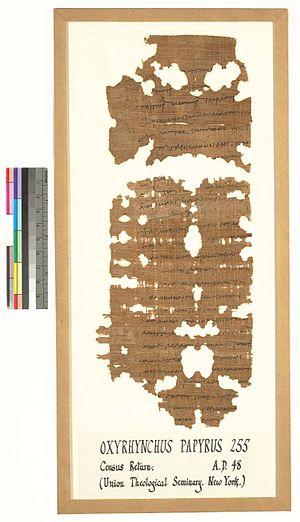 Papyrus Oxyrhynchus 255 - Image: P Oxy 255