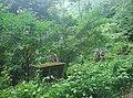 Palakkad, Kerala, India - panoramio (26).jpg
