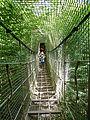 Parc animalier de Sainte-Croix-Pont suspendu.jpg