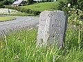 Parish boundary stone, Llwynderw - geograph.org.uk - 452091.jpg