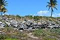 Parque Nacional Marinhos dos Abrolhos. Bahia. Por Gustavo Abrahim 01.jpg