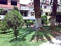 Parque de La Colinita Guayabal - panoramio (2).jpg