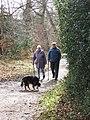 Part of the path that runs round the meadow, Ashridge - geograph.org.uk - 1193953.jpg