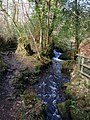 Path and stream, Lower Combe - geograph.org.uk - 1763365.jpg