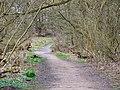 Path through Prestwich Clough - geograph.org.uk - 1773434.jpg