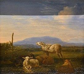 Paysage : moutons et chèvres