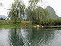 Peach Blossom Land at Yangshuo 陽朔世外桃源 - panoramio.jpg
