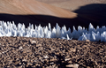 Penitentes Ice Formations.png