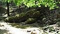 Petaloudes - stream of dreams - panoramio.jpg