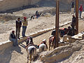 Petra - Bedouins ready to rent you a horse (9779264803).jpg
