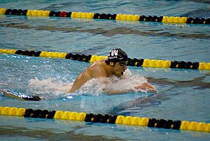 Swimming at the 2008 Summer Olympics – Men's 100 metre butterfly - Michael Phelps, seen here in February 2008, was the heavy favorite to win the gold medal.