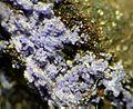 Phosphosiderite-132877.jpg