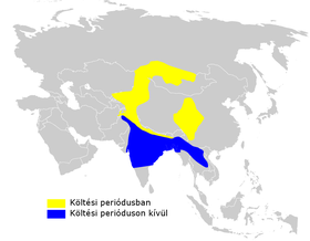Phylloscopus humei distribution map.png