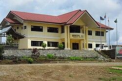 Piagapo Municipal Complex.jpg