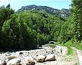 Piaggiona mai 2006 0062 wiki.jpg