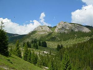 Apuseni Natural Park - Vlădeasa Massif, Apuseni Mountains