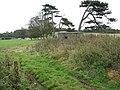 Pillbox in field near Home Farm - geograph.org.uk - 1583061.jpg