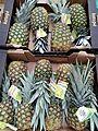 Pineapples19092016(1).jpg