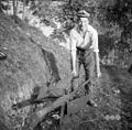 Plug, Bukovo 1954.jpg