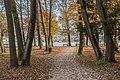 Poertschach Halbinselpromenade Landspitz Herbstlaub 13112016 5395.jpg