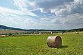 Pohled na Valchov od východu, okres Blansko (02).jpg