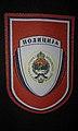 Police of Republika Srpska patch right.jpg