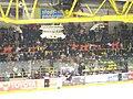 Polonsese EVD und EHC-Fans.jpg