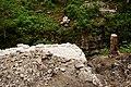Pont des Anabaptistes 03 10.jpg