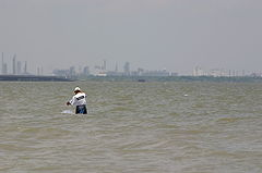 Lavaca bay wikipedia the free encyclopedia for Port lavaca fishing
