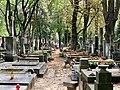 Powązki Cemetery, Warsaw, Poland in 2019, 06.jpg