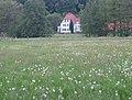 Preußisch Oldendorf Mai 2009 038.jpg